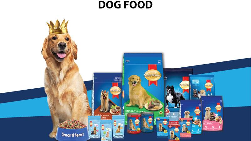 Dog-Category