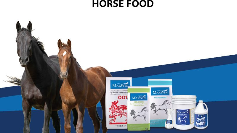 Horse-Food-Category